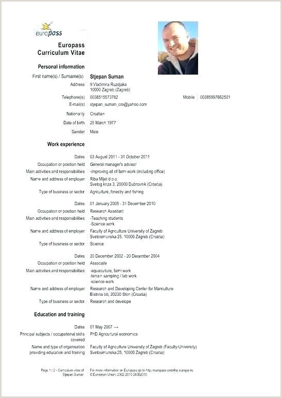 Www.europass Cv format Europass Cv Template Doc European format Docx – Lotusdigital