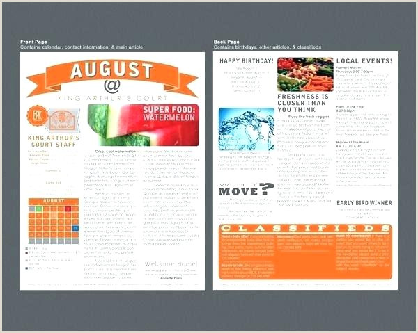 Summer Camp Newsletter Template Colourful Flyer Sample Free