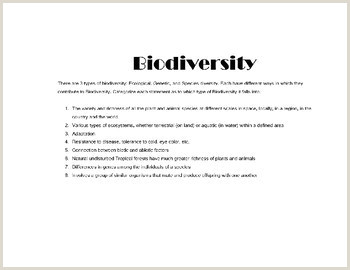Color By Number Biodiversity Worksheet