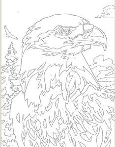 Color by Number Bird Coloring Pages