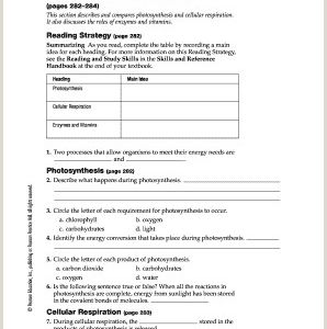 Color by Number Photosynthesis Worksheet Answers