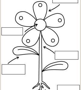 Easter Worksheets Sparklebox