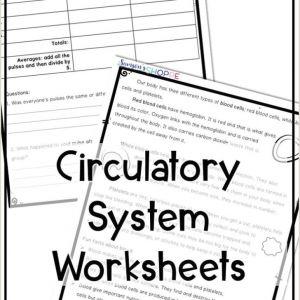 Free Kindergarten Reading Worksheets Print