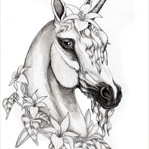 Horse Color by Number Coloring Pages