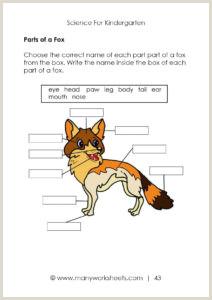 Kindergarten Reading Writing Worksheets