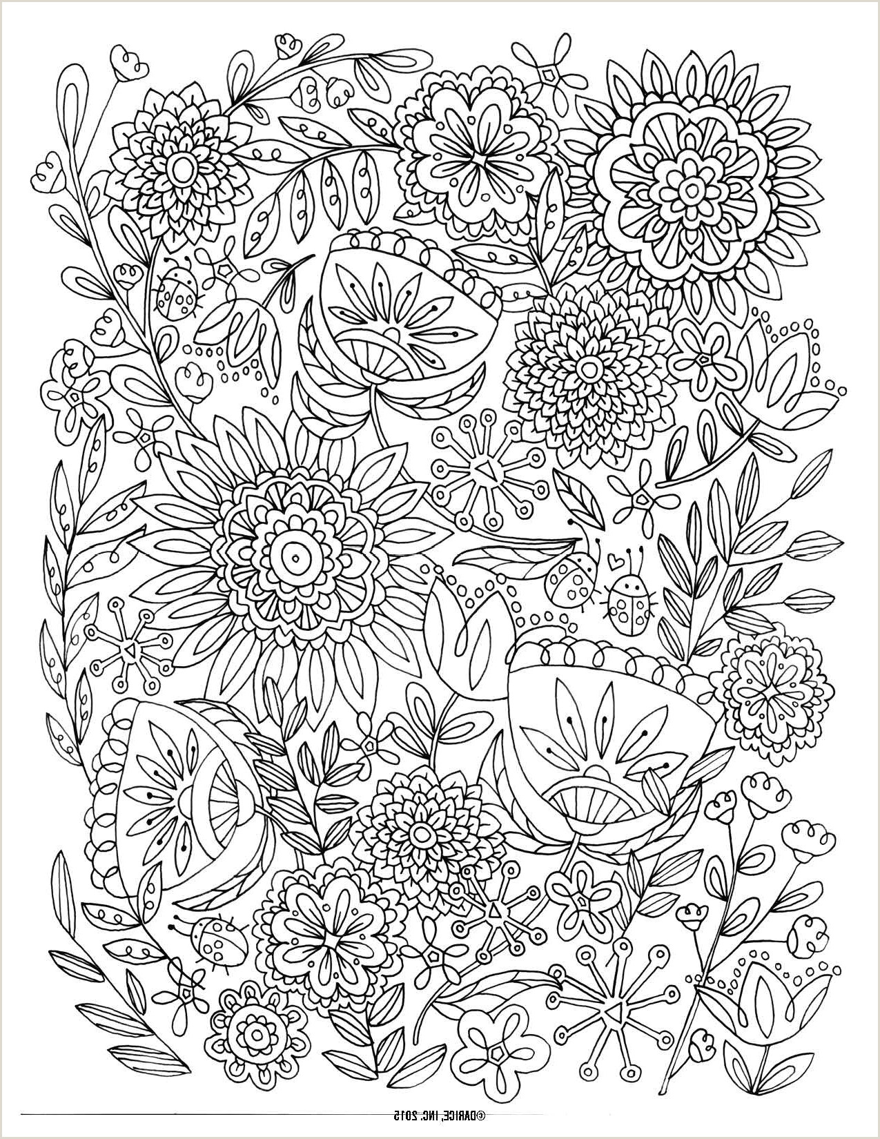 Lion Color By Number Coloring Pages