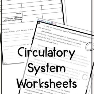 Reading and Comprehension Worksheets for Kindergarten