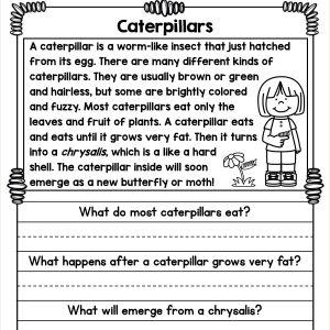 Reading Comprehension Worksheets for Kindergarten