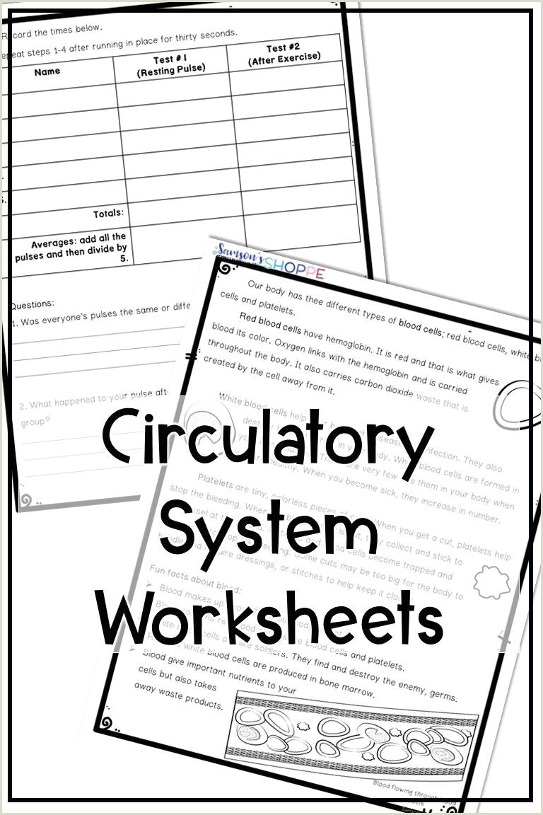 Reading Graph Worksheets for Kindergarten