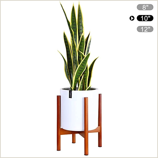 Advertising Stands Outdoor Plants Display Rack Fits Up To 10 Inch Planter Winning Plant