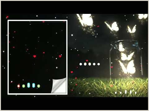 Banner Light Screen Amazing Butterfly Avee Player Template Kinemaster Bleak