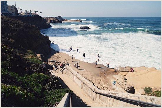 Best Business Cards In San Diego, Ca The 10 Best Restaurants In San Diego Updated October 2020