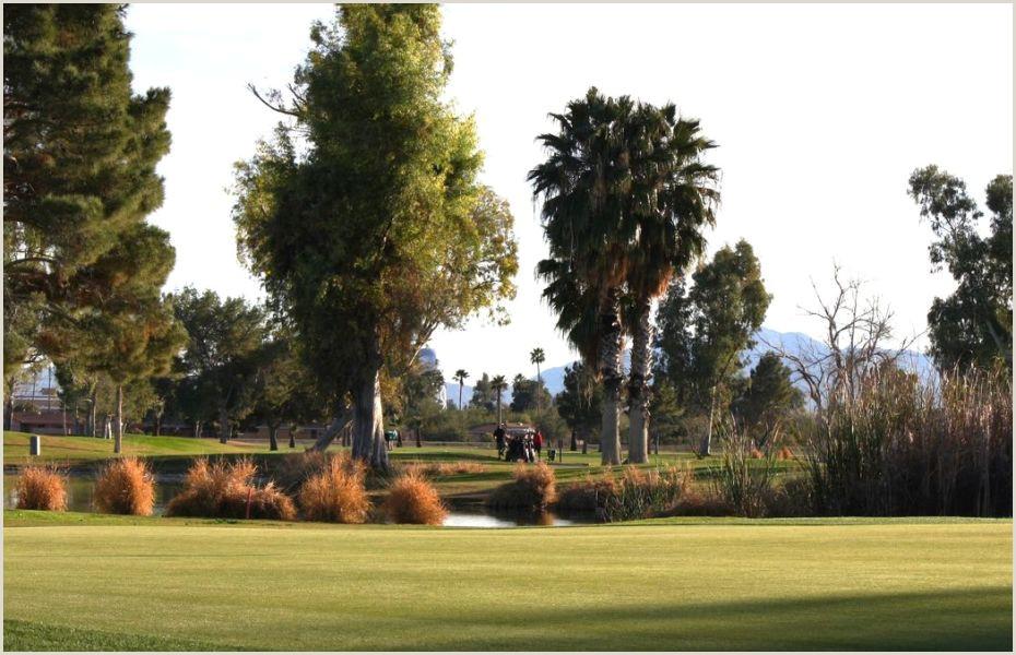 Best Business Cards Mesa Az Toka Sticks Golf Club In Mesa Arizona Usa