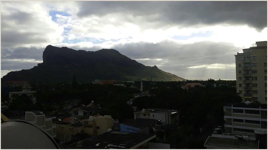 Best Gold Business On Earth Gold Nest Hotel Reviews Quatre Bornes Mauritius