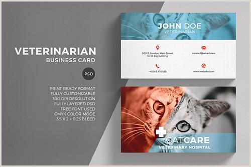 Business Card Format Veterinarian Business Card Template Avaxgfx All