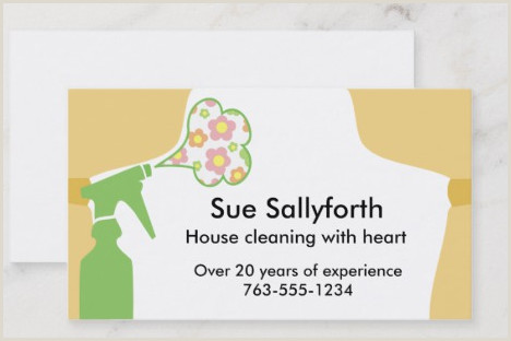Business Cards For House Cleaning Examples Top 25 Cleaning Service Business Cards From Around The Web