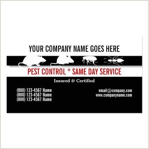 Businesses Cards Vermin Control Vermin Control Business Cards Design