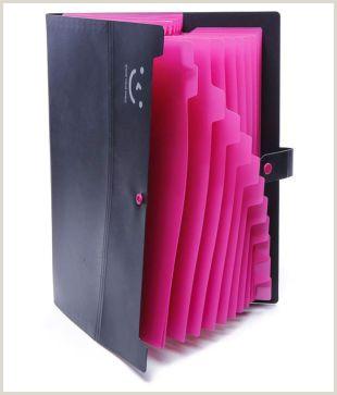 Creativebusiness A4 Organ Pack 12 Pocket Folder Multi Story Folder Female