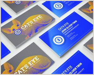 Design Business Card Professional Card Design By Arehime On Envato Studio