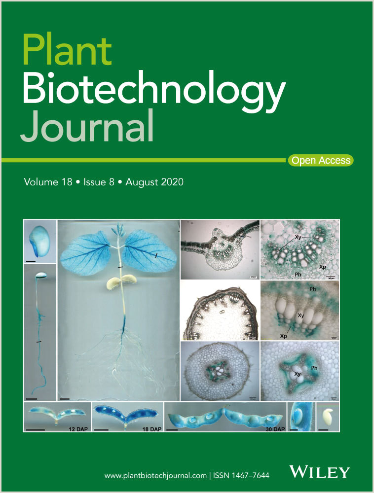 Free Pull Up Samples Usa Methylation Of Mdmyb1 Locus Mediated By Rddm Pathway