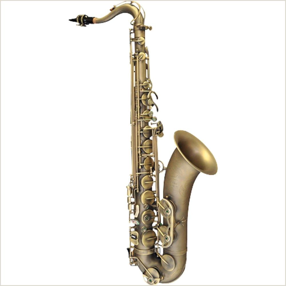 Jazz Saxophone Musician Business Cards Unique P Mauriat Pmxt 66r Series Professional Tenor Saxophone Dark