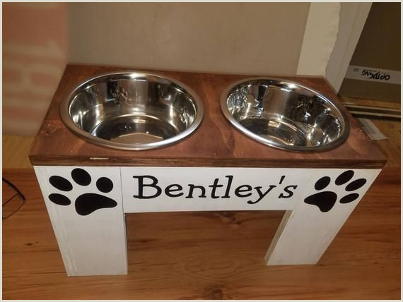 Large Picture Stands Pet Stands Es With Bowls Big Dogs