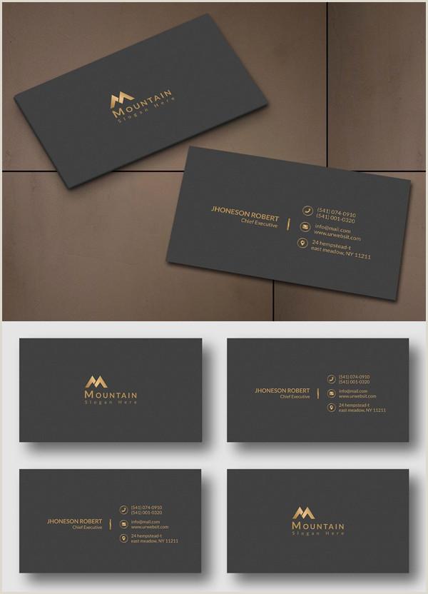 Portfolio Business Cards Executive Business Card