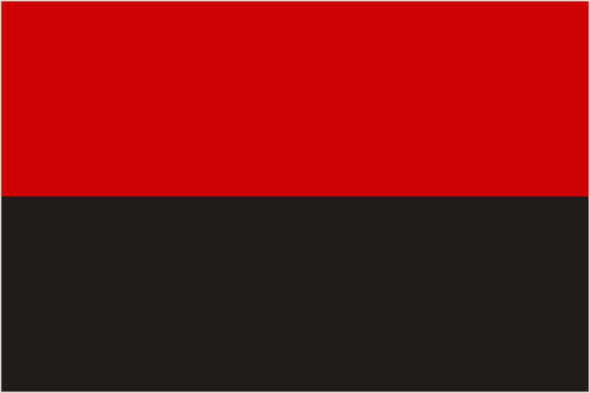 Post Up Banner Ukrainian Insurgent Army