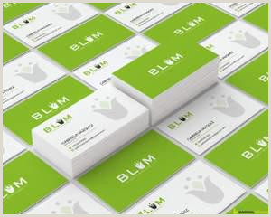 Professional Bussiness Cards Professional Business Card Design By Barwaldesigns On Envato