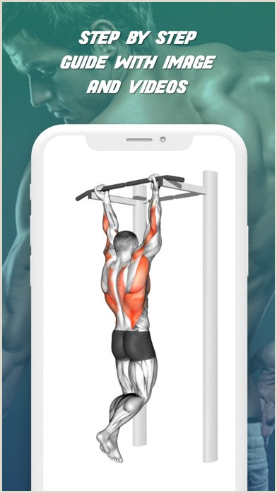Pull Up Poster Gym Musculation Exercice Plan Revenue & Download Estimates