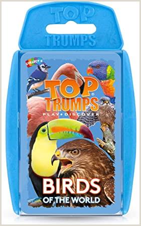 Titles On Business Cards Top Trumps Wm En1 6 Birds Card Game