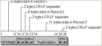 Unique Computer Programmer Business Cards Microsoft Fortran Powerstation Patible Files Windows