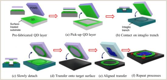 Unique Plastic Business Cards Nanomaterials Free Full Text