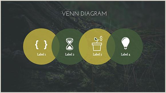 Vertical Banners Design Nature Background Presentation Template