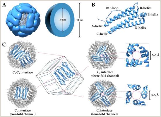 Vertical Runner Coupon Nanomaterials