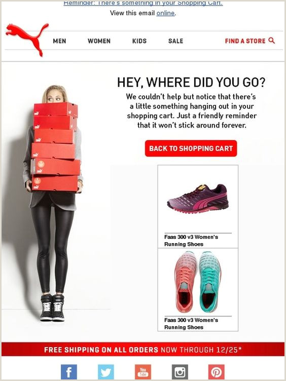 Visit Cart Sample The 16 Awesome Abandoned Cart Email Examples [ Strategies