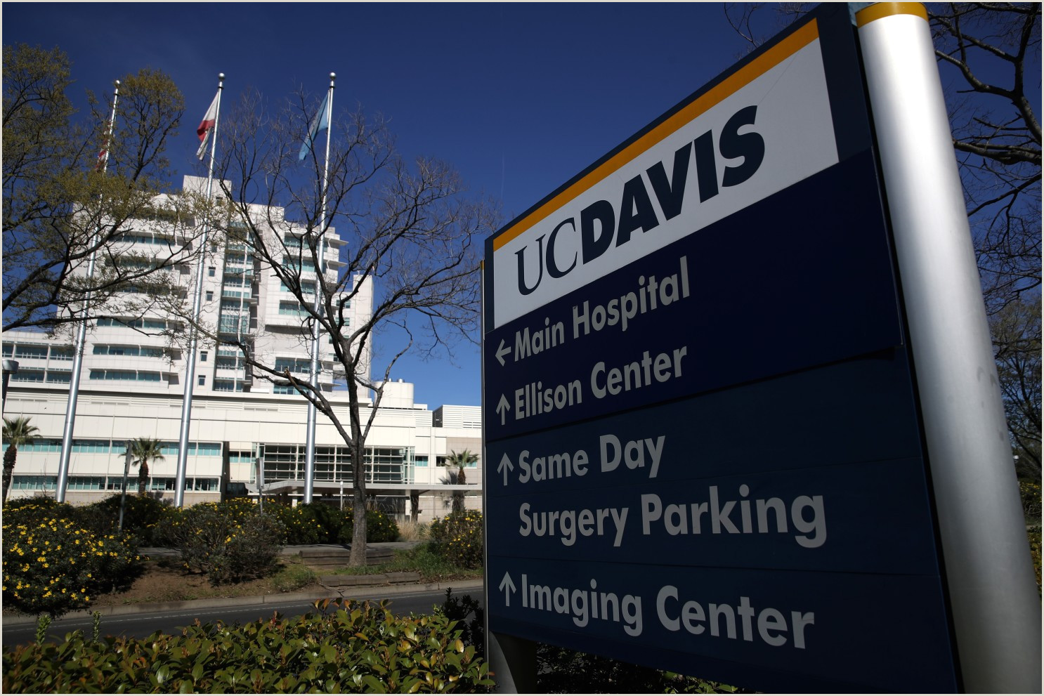 Vista Print Signs New Coronavirus Cases In California Spark Fears Of Wider