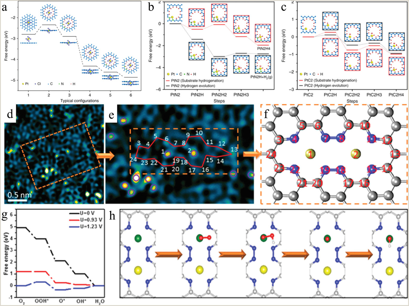 Which Of The Following Is The Best Example Of Complements? Defect Engineering In Carbon‐based Electrocatalysts Insight