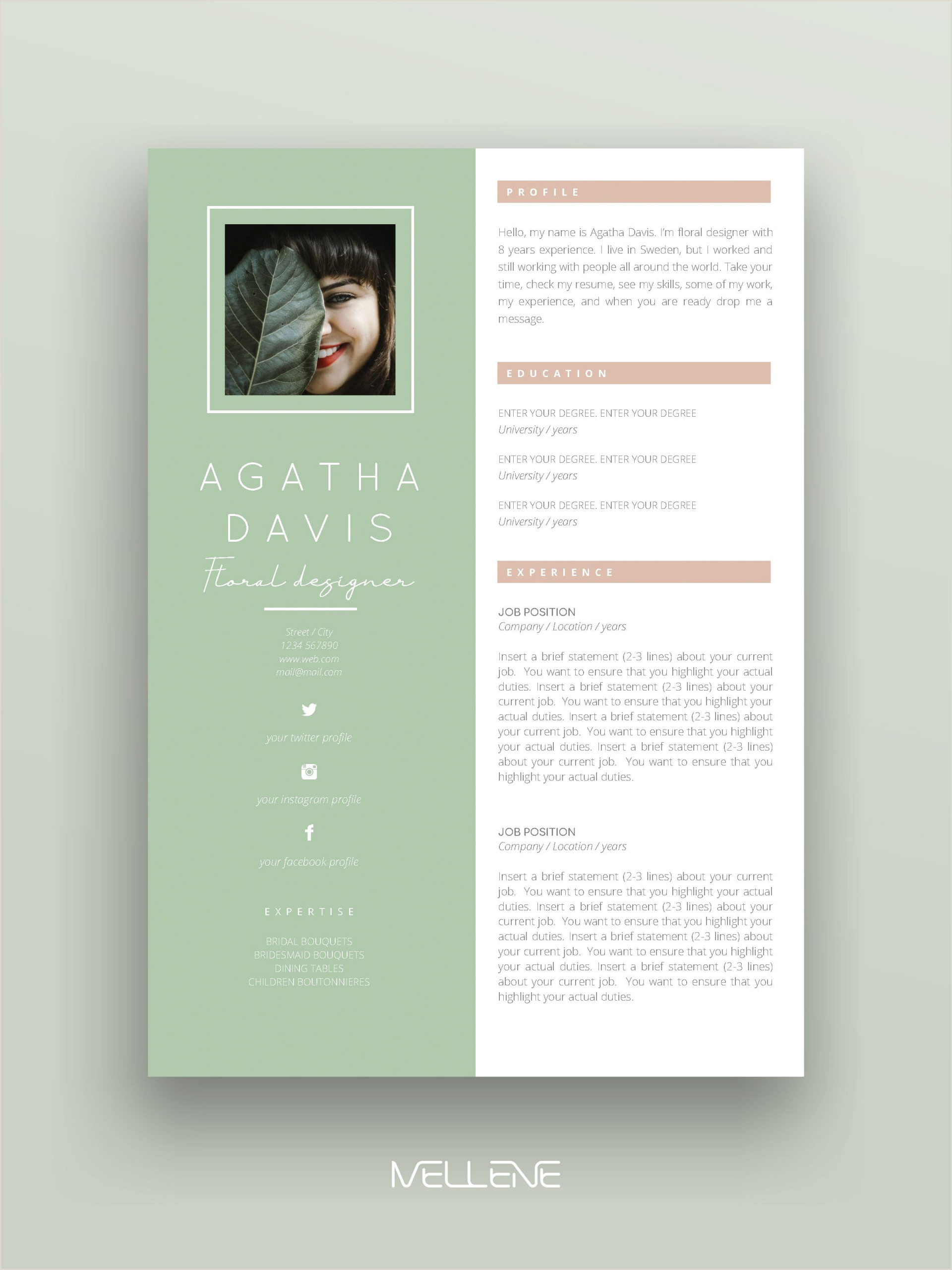 Words Related To Creativity And Design Resume Template 3 Pages Cv Template Cover Letter Instant