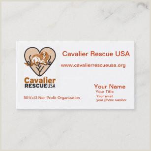 Best Business Cards For Nonprofit Non Profit Business Cards Business Card Printing