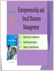 Business Business Business Chapter 6 Entrepreneurship And Small Business Management