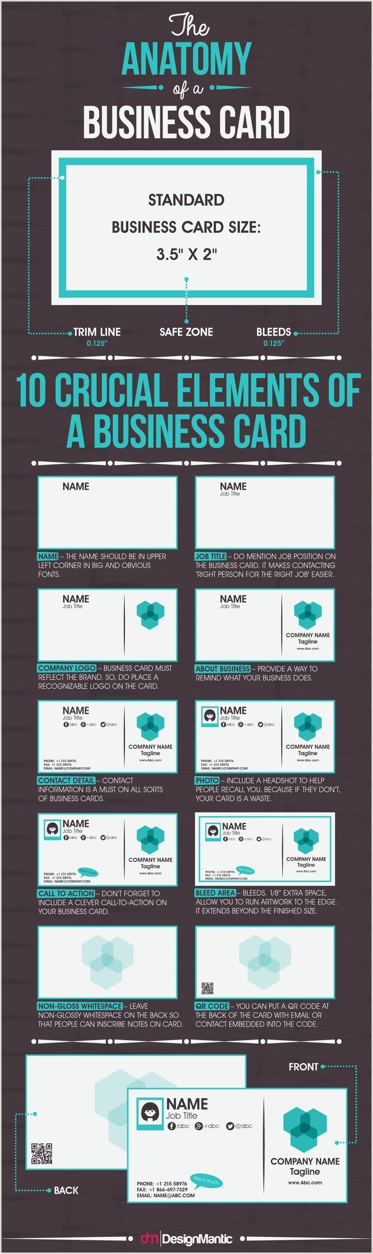 Business Card Information To Include The Anatomy A Business Card Infographic Business Job