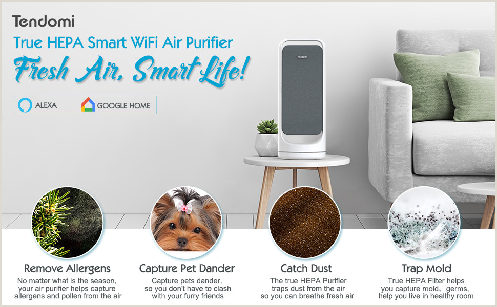 Check Designer Home And Business Tendomi Wifi Smart Air Purifier With True Hepa Fan Air Purifiers For Home Bedroom Fice Dual Fan Quiet Air Cleaner For Pet Dust Allergies