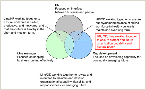 Examples Of Nature Of Business Hr And Organisation Development What Is The Relationship