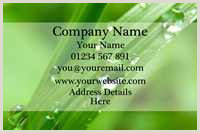Foreverliving Best Business Cards Template Forever Living Business Cards Templates