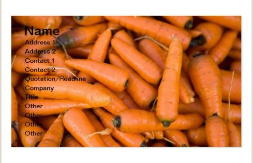 Investor Carrot Best Business Cards Carrots Business Card