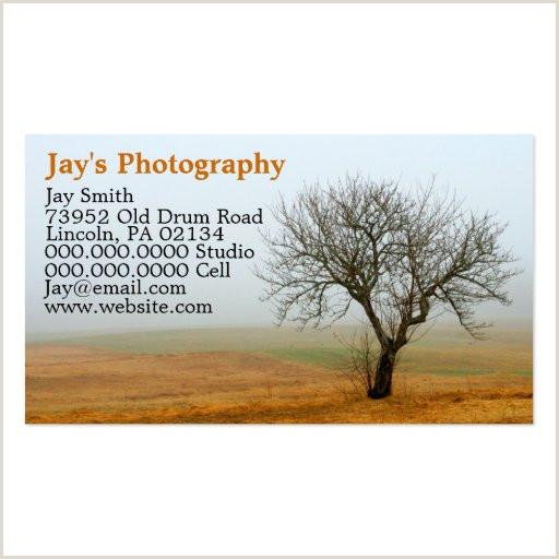 Nature Photographer Business Cards Unique Nature Photographer Business Card Templates