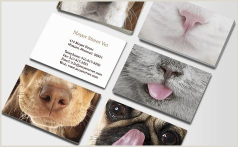 Pictures Of Some Of The Best Business Cards 48 Ideas Photography Business Cards Pet