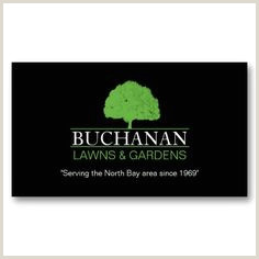 Size Of Normal Business Card 20 Tree Service Business Cards Ideas