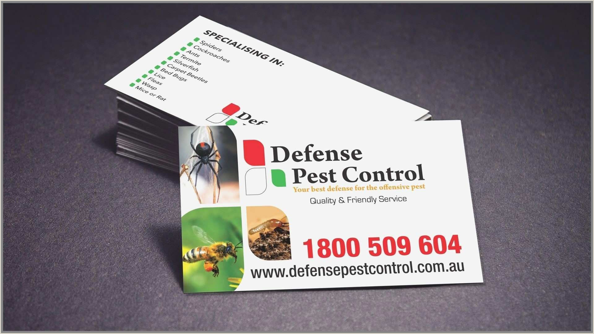 The Very Best Business Cards For Bands Pics Download New House Cleaning Business Cards Templates Free